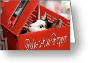 Black And White Cat Greeting Cards - Peek-a-boo Pepper Greeting Card by Andee Photography