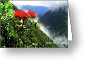 Molokai Greeting Cards - Peles Flower Greeting Card by James Temple