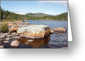 Backcountry Greeting Cards - Pemigewasset Wilderness - Shoal Pond Lincoln New Hampshire USA Greeting Card by Erin Paul Donovan