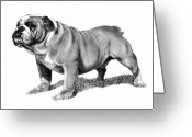 Strong Drawings Greeting Cards - Pencil Drawing of a Bulldog Greeting Card by Joyce Geleynse