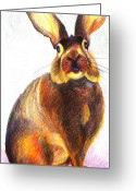 Hare Drawings Greeting Cards - Pencil Hare Greeting Card by Lucy Wightman