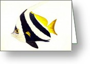 Pennant Greeting Cards - Pennant Fish Greeting Card by Michael Vigliotti