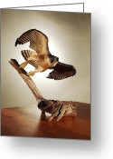 Wings Sculpture Greeting Cards - Peregrine Falcon  Greeting Card by Monte Burzynski
