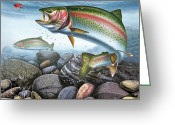 Stream Greeting Cards - Perfect Drift Rainbow Trout Greeting Card by JQ Licensing