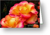Colorful Roses Greeting Cards - Perfect Moment - Rose Greeting Card by Kaye Menner