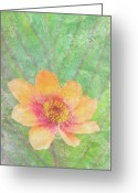 Colorful Photography Painting Greeting Cards - Perfect Peach Greeting Card by JQ Licensing