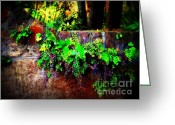 Mold Greeting Cards - Perfusion of Colors Greeting Card by Susanne Van Hulst