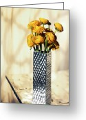 Buttercup Greeting Cards - Persian buttercup Greeting Card by Tony Cordoza