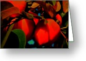 Persimmons Greeting Cards - Persimmon 5 Greeting Card by Helen Carson