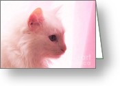 Cat Profile Greeting Cards - Petal Pink Softness Greeting Card by Judy Via-Wolff