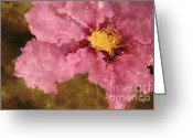Flower Art Greeting Cards - Petaline - ar01bt04c2 Greeting Card by Variance Collections