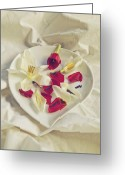 Table Cloth Greeting Cards - Petals Greeting Card by Joana Kruse