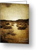 Brown Framed Prints Greeting Cards - Petroglyph Trail Greeting Card by Andrea Hazel Ihlefeld