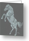 White White Horse Pastels Greeting Cards - Phantom Greeting Card by Carol Wisniewski