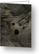 Bewitching Greeting Cards - Phantom Dog Greeting Card by Shirley Sirois