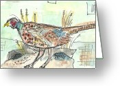 Pheasant Greeting Cards - Pheasant Greeting Card by Matt Gaudian