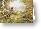 Camouflaged Painting Greeting Cards - Pheasants in Woodland Greeting Card by Carl Donner 