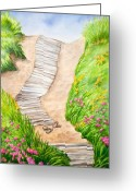 Beach Grass Greeting Cards - Philbin Beach Path Greeting Card by Michelle Wiarda