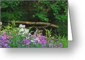 Del Norte Greeting Cards - Phlox Along The Creek 7185 Greeting Card by Michael Peychich