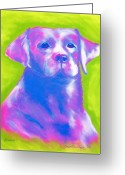 Vibrant Pastels Greeting Cards - Phoenix Greeting Card by Christine Crosby