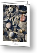 Beach Art Greeting Cards - Picasso Greeting Card by Peter Tellone