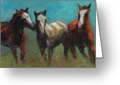 Wild Horses Greeting Cards - Picking On The New Guy Greeting Card by Frances Marino