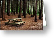 Rural Landscapes Greeting Cards - Picnic Table Greeting Card by Carlos Caetano
