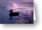 Merlin Greeting Cards - Picture Yourself... Greeting Card by Arthur Miller