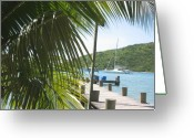 Van Dyke Greeting Cards - Pier at Jost Van Dyke Greeting Card by Stacey Robinson