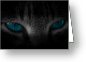 Feline Greeting Cards - Piercing Greeting Card by Cecil Fuselier