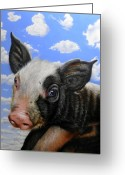 Pig Greeting Cards - Pig in the Sky Greeting Card by Jurek Zamoyski