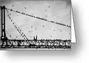 Crane Greeting Cards - Pigeons Sitting On Building Crane And Flying Greeting Card by Image by Ivo Berg (Crazy-Ivory)