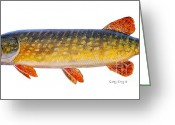 Barracuda Greeting Cards - Pike Greeting Card by Carey Chen