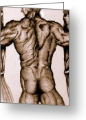 Muscular Drawings Greeting Cards - Pillar Of Strength Greeting Card by Divine -