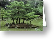 Kansai Triangle Greeting Cards - Pines On Island In The Gardens Greeting Card by Tim Laman