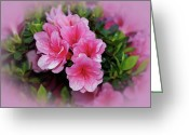 Indiana Flowers Greeting Cards - Pink Azaleas Greeting Card by Sandy Keeton