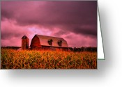 Featured Greeting Cards - Pink Barn  Greeting Card by Emily Stauring