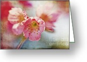 Texture Flower Photo Greeting Cards - Pink Blossom Greeting Card by Scott Pellegrin