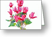 Flower Greeting Cards Greeting Cards - Pink Cyclamen Greeting Card by Pat Yager