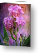 Iris Art Mixed Media Greeting Cards - Pink Goddess Greeting Card by Carol Cavalaris
