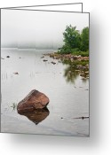 East Coast Greeting Cards - Pink Granite In Jordan Pond at Acadia Greeting Card by Steve Gadomski