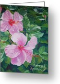 Caribbean Art Pastels Greeting Cards - Pink Hibiscus Greeting Card by John Clark
