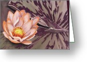 Lilly Pad Painting Greeting Cards - Pink lilly Greeting Card by Diana Weems