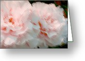 Pink Peonies Greeting Cards - Pink Peonies Digital Painting  Greeting Card by H G Mielke