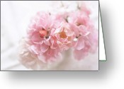 Pink Flower Greeting Cards - Pink Roses Greeting Card by Jill Ferry