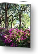 Savannah Square Greeting Cards - Pink Savannah Azaleas Greeting Card by Carol Groenen