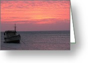 Taganga Greeting Cards - Pink sky Greeting Card by Gal Moran