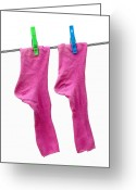 Washing Greeting Cards - Pink Socks Greeting Card by Frank Tschakert