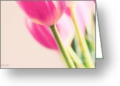Flower Cards Greeting Cards - Pink Tulips Greeting Card by Jayne Logan