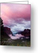 Majestic Greeting Cards - Pink Tunnel View Greeting Card by Ben Neumann